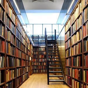 Библиотеки Семилук