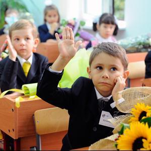 Школы Семилук