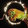 Цирки в Семилуках